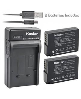 Kastar Battery (X2) & Slim USB Charger for Panasonic DMW-BLD10, DMW-BLD10E, DMW-BLD10PP, DE-A93B and Panasonic Lumix DMC-G3, Panasonic Lumix DMC-GF2, Panasonic Lumix DMC-GX1 Digital Cameras