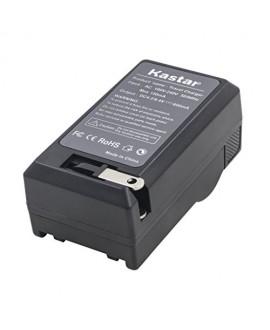 Kastar Travel Charger Kit for Panasonic DMW-BCK7, DMW-BCK7E and Lumix DMC-FH25 FH27 DMC-FP5 FP7 DMC-FS16 FS18 FS22 DMC-FS35 DMC-FS37 DMC-S1 DMC-S2 DMC-S3 DMC-SZ1 DMC-SZ5 DMC-SZ7 DMC-TS20 DMC-TS25