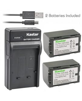 Kastar Battery (X2) & Slim USB Charger for Panasonic CGR-D16 D16S CGR-D08 D08S CGR-D14 CGR-D28 D28S, CGR-D120 CGR-D210 CGR-D220 CGR-D320 & AG Series AJ-PCS060G DZ-MX5000 NV Series PV Series VDR-M20