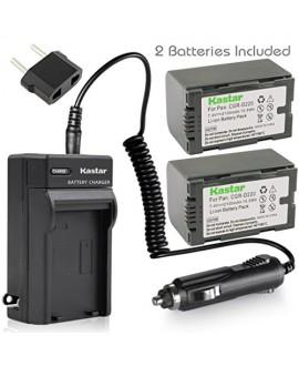 Kastar Battery (X2) & AC Travel Charger for Panasonic CGR-D16 D16S CGR-D08 D08S CGR-D14 CGR-D28 D28S, CGR-D120 CGR-D210 CGR-D220 CGR-D320 & AG Series AJ-PCS060G DZ-MX5000 NV Series PV Series VDR-M20