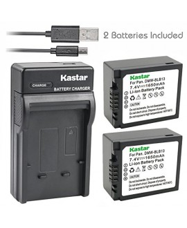 Kastar Battery (X2) & Slim USB Charger for Panasonic DMW-BLB13, DMW-BLB13E, DMW-BLB13GK and Panasonic DE-A49, DE-A49C work with Panasonic Lumix DMC-G1, DMC-G2, DMC-G10, DMC-GF1, DMC-GH1 Cameras