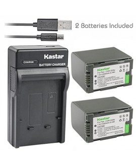 Kastar Battery (X2) & Slim USB Charger for Panasonic CGR-D28 D28S CGR-D08 D08S CGR-D14 CGR-D16 D16S, CGR-D120 CGR-D210 CGR-D220 CGR-D320 & AG Series AJ-PCS060G DZ-MX5000 NV Series PV Series VDR-M20