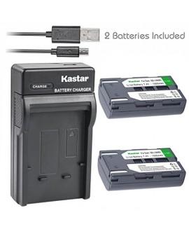 Kastar Battery (X2) & Slim USB Charger for Samsung SB-LSM80 and SC-D351 VP-D351 VP-D351i VP-D352 VP-D352i VP-D353 VP-D353i VP-D354 VP-D354i VP-D647 VP-D651 VP-D653 VP-DC161 VP-DC161i DC163 DC163i