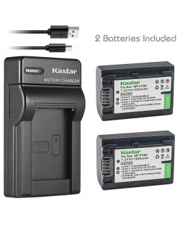 Kastar Battery (X2) & Slim USB Charger for Sony NP-FV50 NP-FV40 NP-FV30 and AX53 CX675/B CX220 CX230 CX290 CX330 CX380 CX430V CX900 PJ200 PJ230 PJ340 PJ380 PJ430V PJ540 PJ650V PV790V PJ810 TD30V AX100